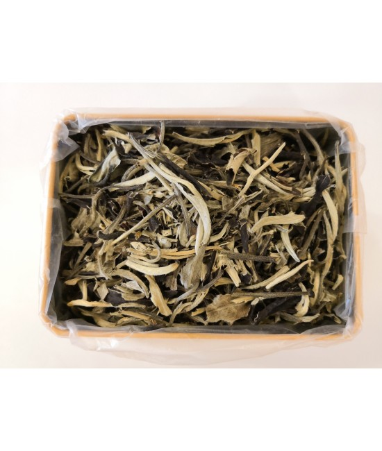 Old Tree White Tea
